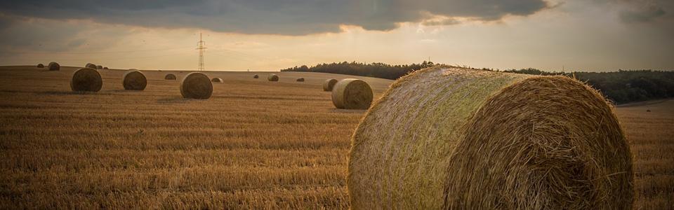 Recouvrement de créances pour les distributeurs agricoles et ETA